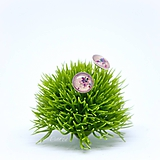 Náušnice - Ružové - napichovacie náušnice - 11478300_