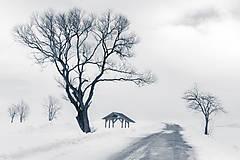 Fotografie - Zimná krajina - 11478500_