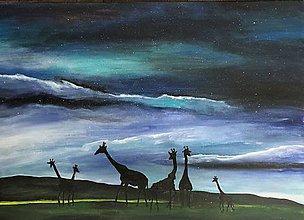 Obrazy - Stádo žiraf pod hviezdnou oblohou - 11479723_