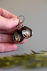 Náušnice - Náušnice Smrekové semienka kvapky (2829 A CHO) - 11482492_