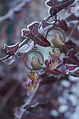 Náušnice - Náušnice - Vtáky v tŕní - 11488043_