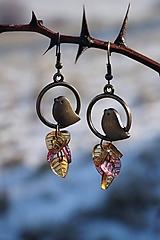 Náušnice - Náušnice - Vtáky v tŕní - 11488046_