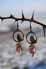 Náušnice - Náušnice - Vtáky v tŕní - 11488047_