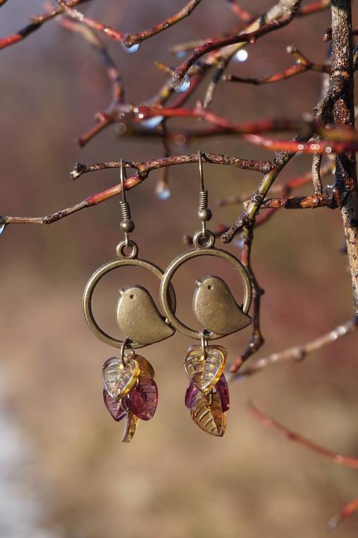 Náušnice - Vtáky v tŕní