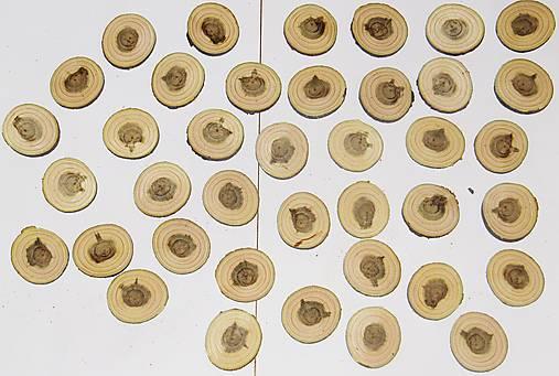 Drevené pláty - sada 39 kusov