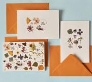 Papiernictvo - Pohľadnice - set 3ks - 11506450_