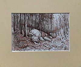 Kresby - Bludné skaly - 11512806_