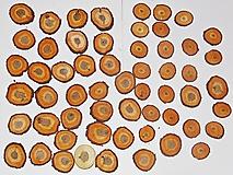 Iný materiál - Drevené pláty - sada 57 kusov - 11530266_