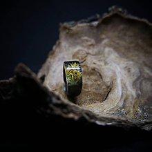 Prstene - Drevený prsteň: Nový život - 11533758_