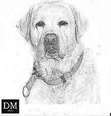 Kresby - Kreslené zvieratko - na zákazku - 11532459_
