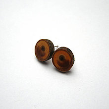 Náušnice - Drevené náušnice napichovacie - tujové ováliky - 11533308_