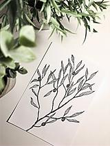 Kresby - minimalistický olivovník  - 11536457_