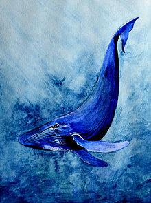 Obrazy - Veľryba - maľba akvarelom - 11538077_