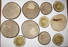 Iný materiál - Drevené pláty z dreva - sada 11 kusov - 11543426_