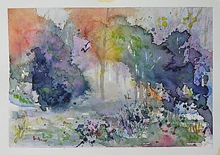 Obrazy - farebný les - 11546704_