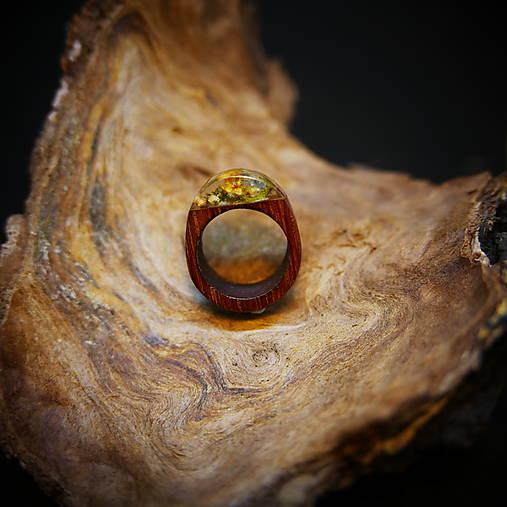 Drevený prsteň: Na lúke