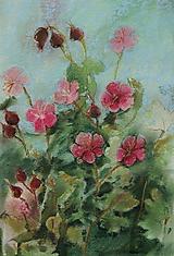 Obrazy - Ružový pakost - 11548842_