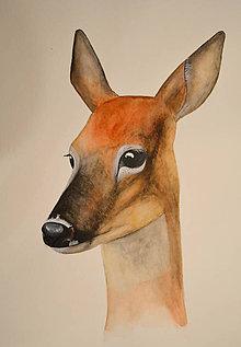 Obrazy - Laň - maľba akvarelom - 11564999_
