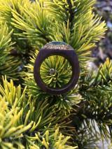 Prstene - Drevený prsteň: Na morskom dne - 11563088_
