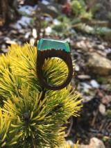 Prstene - Drevený prsteň: Tajomná hmla - 11563182_