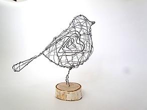 Socha - strieborný vtáčik - 11563891_