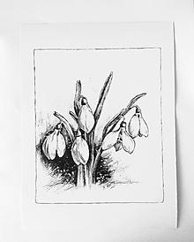 Kresby - snežienky...perokresba A4 - 11568962_
