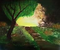 Obrazy - Cesta z lesa - 11583029_