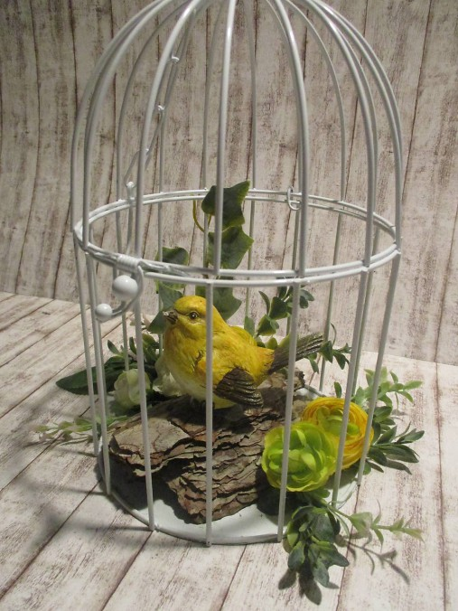 Vtáčik v klietke
