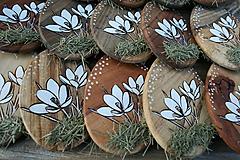 """Dekorácie - veľkonočná dekorácia na zavesenie """"krokus"""" - 11608105_"""