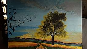 Obrazy - Krásny koniec letného dňa - 11615857_