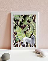 Obrázky - Kráľovná džungle - art print A4, A5 - 11620223_