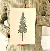 Grafika - Print - ,Picea' - 11638655_