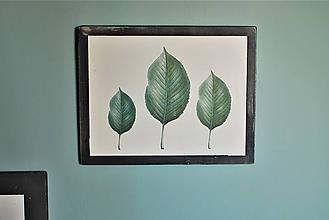 Obrázky - Obraz Botanical no.2 - 11644054_