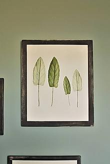 Obrázky - Obraz Botanical no.3 - 11644072_