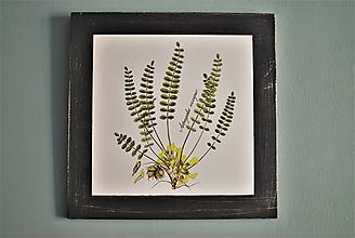 Obrázky - Obraz Botanical no.7 - 11644127_