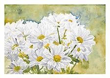 Obrazy - Biele kvety - 11649245_