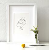 Kresby - Kuřátko (bez nápisu) - vel. A5 - 11660608_