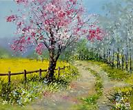 Obrazy - jaro - 11680639_
