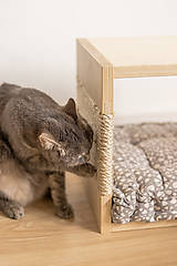 Pre zvieratká - Domček pre mačky - 11681002_