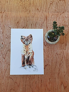 Papiernictvo - Pohľadnica:Lasička - 11682108_