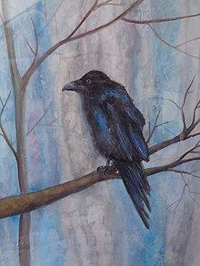 Obrazy - Na strome - akvarel - 11686842_