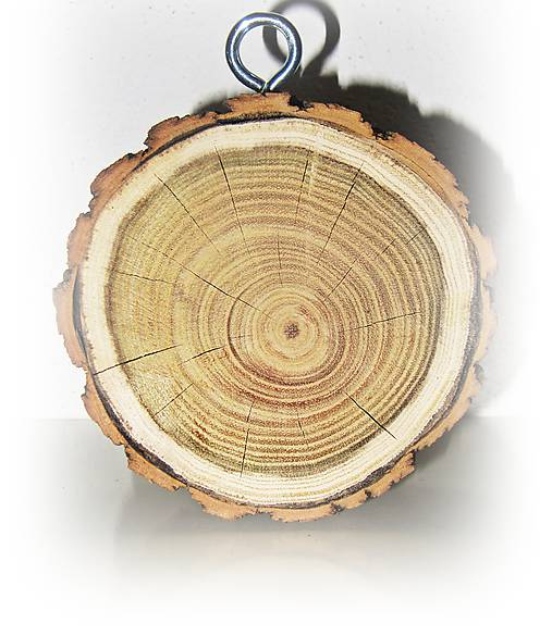 Drevený hrubý plát z dreva na zavesenie, priemer 10 cm, hrúbka 4 cm
