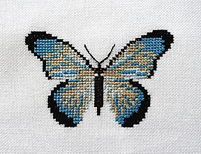 Obrázky - Výšivka - Motýľ modrý - 11711010_