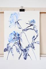 Obrazy - Reprodukcia akvarelu - Pivónie - 11709325_