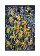 Obrazy - Narcisy - 11708449_