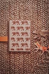 Papiernictvo - Lesné stvory (zápisníky A5) - 11713389_