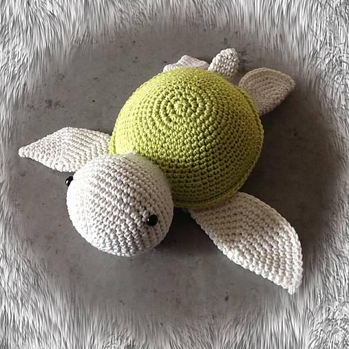 korytnačka zelená SKLADOM