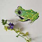 Kresby - Žabka s bodkami - ručně kolorovaná reprodukce  (vel. A5) - 11754440_