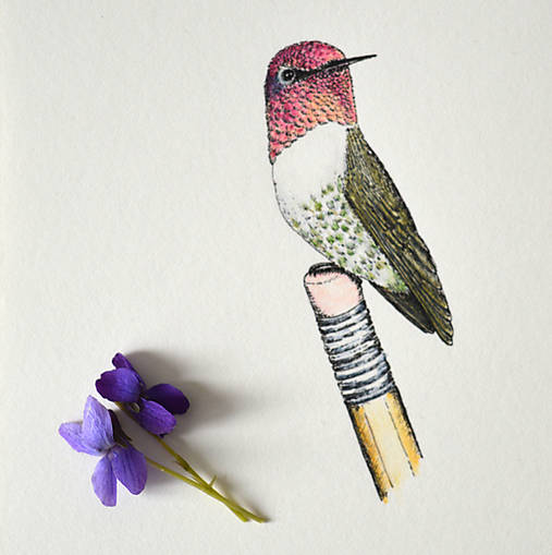 Kolibrík na ceruzke - originál (vel. A5)