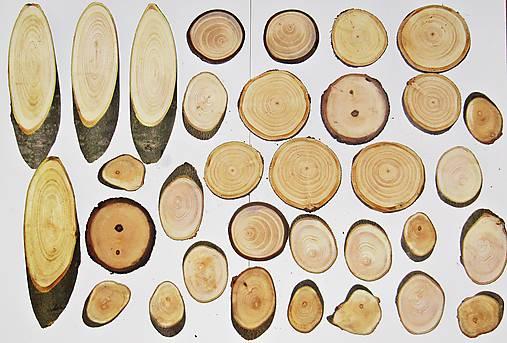 Drevené pláty - sada 33 kusov